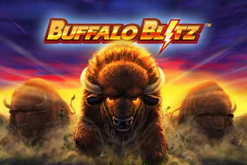Buffalo Blitz screenshot 1