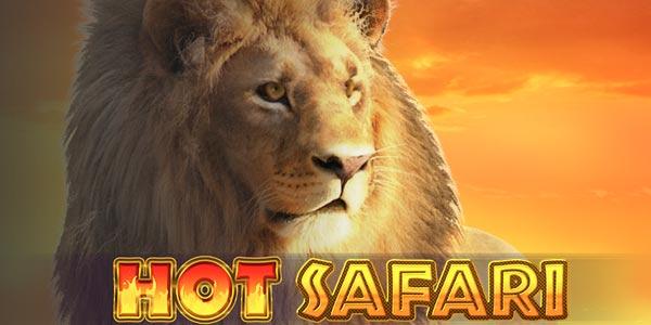 Hot Safari screenshot 1