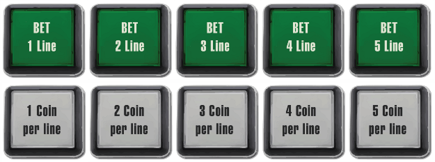 Example Five Paylines Button Panels Video Slot Machine