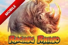 Raging Rhino screenshot 1