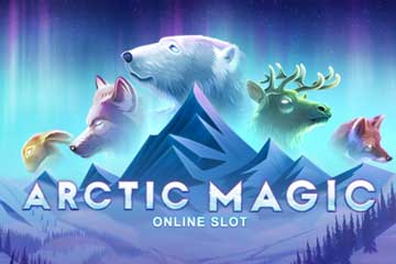 Arctic Magic screenshot 1