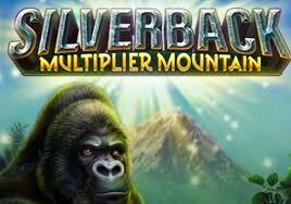 Silverback Multiplier Mountain screenshot 1